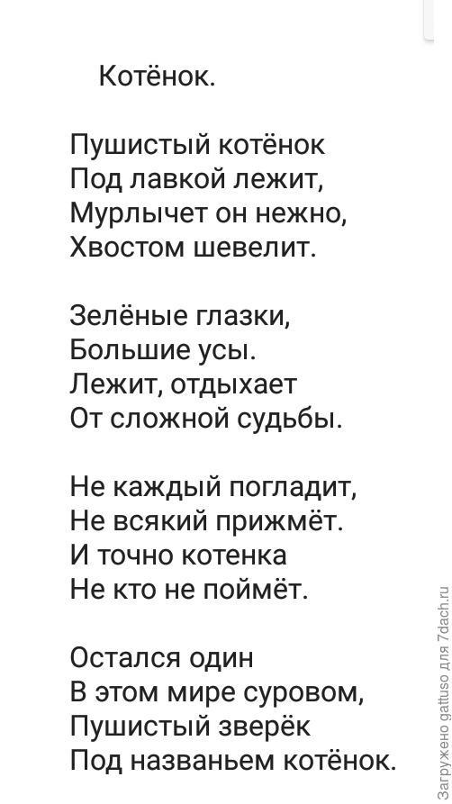 С уважением, Базовый поэт Николай