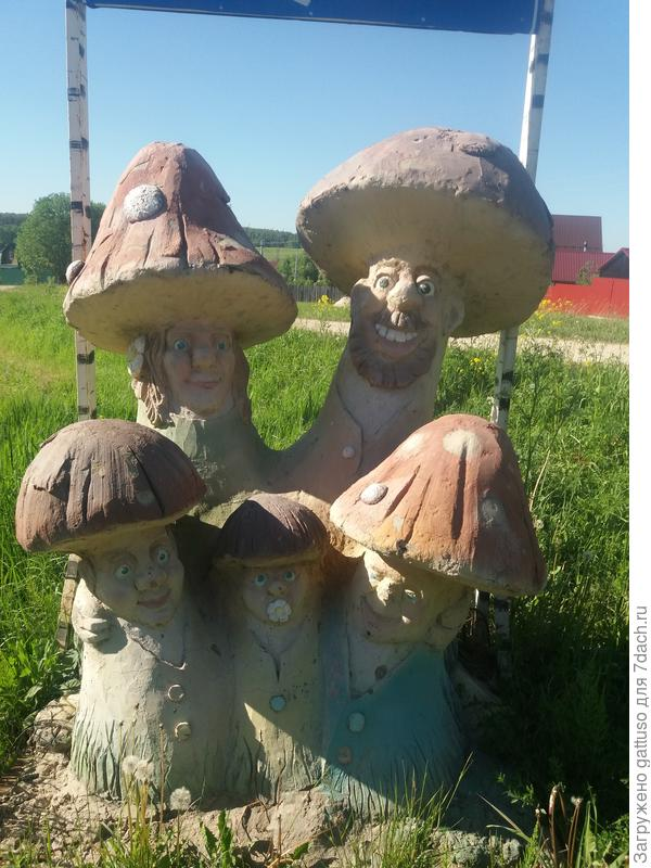 Вот такие весеоые грибочки))