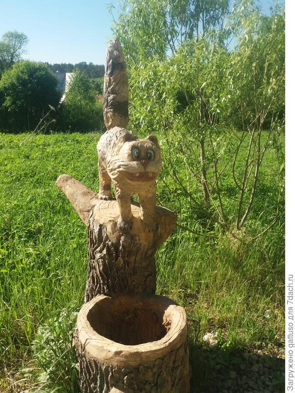 Кот который что то увидал)) выкинув почти из век глаза)))))
