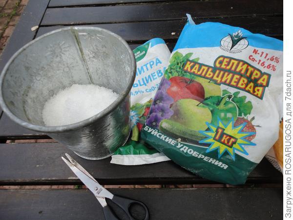 Кальциевая селитра хороша весной для кислых почв, действует очень эффективно. Фото автора