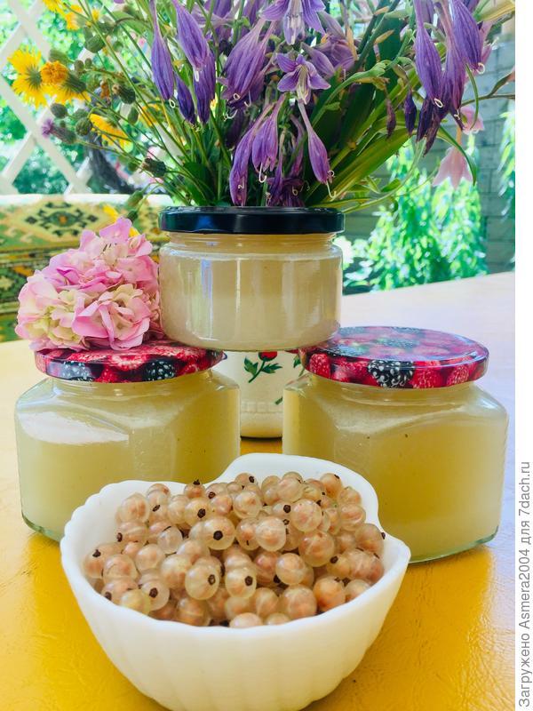 Желе из белой смородины на зиму - пошаговый рецепт приготовления с фото