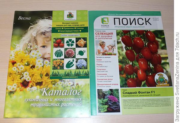 луковичные и журнал