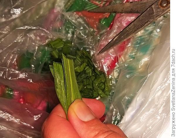 Заморозка овощей на зиму: спаржевая фасоль и перо порея. Пошаговый рецепт с фото