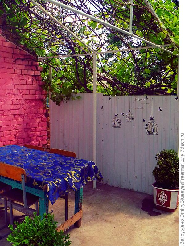Беседка из винограда на заднем дворе (в разработке)