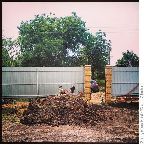Двор перед домом