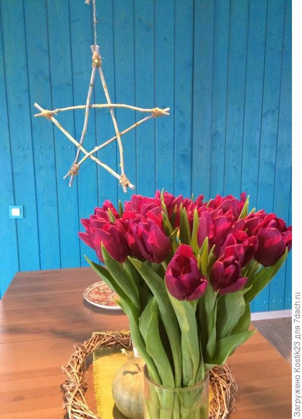Тюльпаны :)