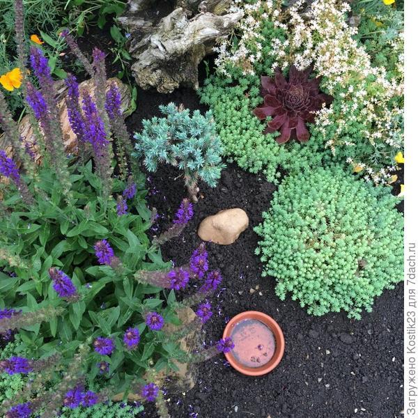 Мой любимый мини уголок в саду :)