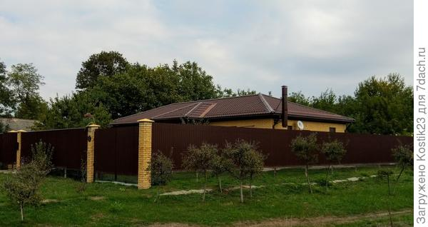 За моим домом над крышей видно ещё несколько орехов