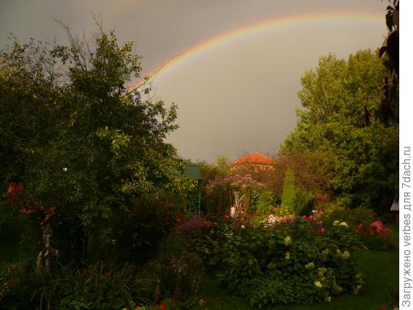Прошел долгожданный дождь, на небе появилась красивая радуга.