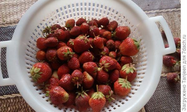 ...она,исходна ягода)))..