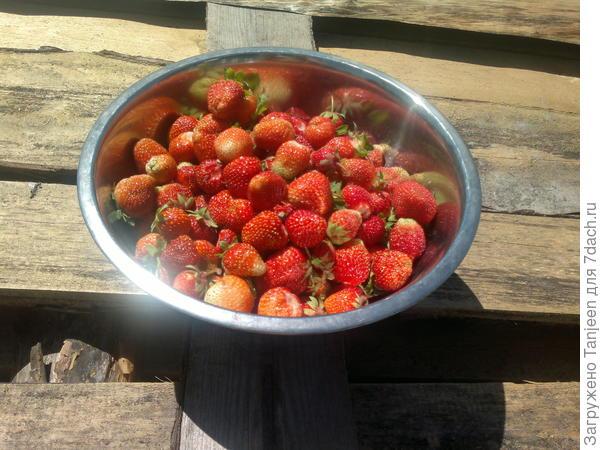 чашка ягод типа на завтрак)))