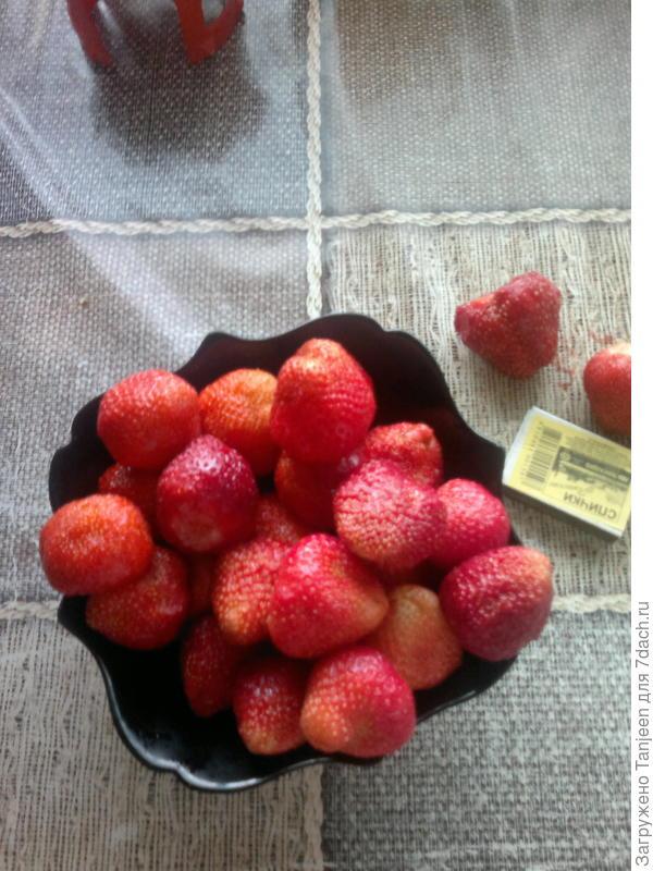 ...вот,попадаются такие суперные ягодины,мы их сразу в морозильник,зимой себя и детей будем дразнить)))