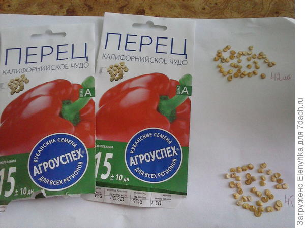 2 пакета семян
