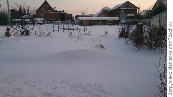 Вчера на даче, белым бело!
