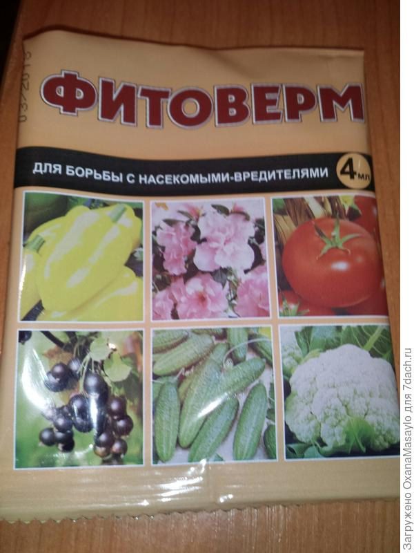 этот в Леруа по 11 руб., ФармБиомед, Н.Новгород