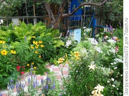 Заходите в наш сад!