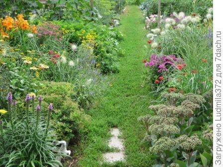 Садовая дорожка-газон