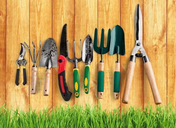 Садовый инвентарь: весенняя проверка готовности