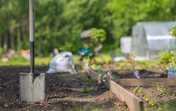 Без универсальной штыковой лопаты в саду придется сложно