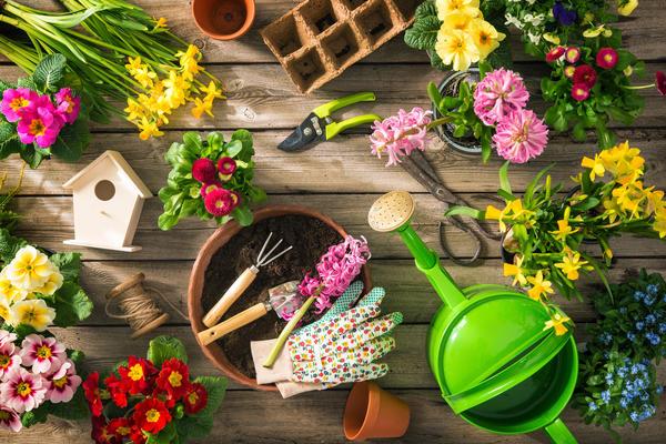 10 полезных товаров от ОБИ, которые помогут преобразить ваш весенний сад