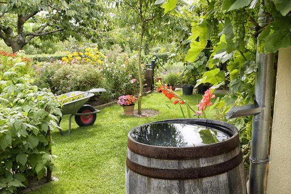 Для полива сада из бочек используют специальные насосы