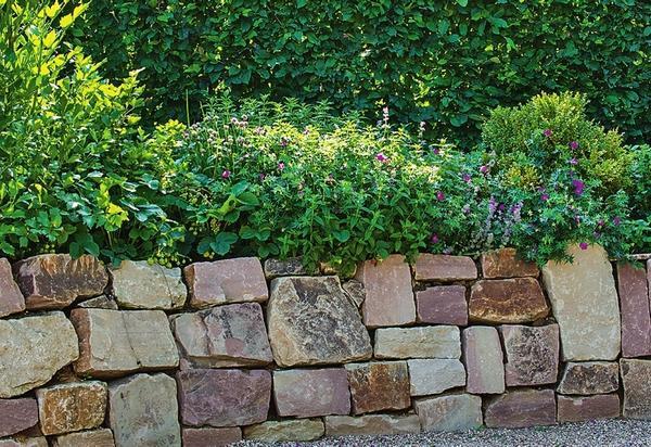 Стенка сухой кладки из граувакка выглядит очень гармонично. Не в последнюю очередь на это влияет форма камней - многие из них почти квадратные