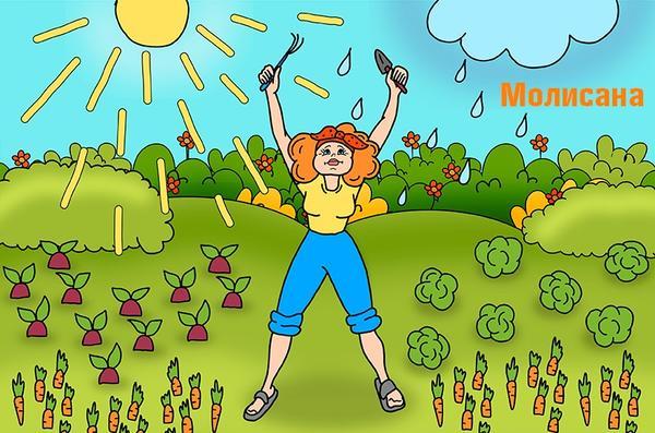 В позе Молисана удобно призывать высшие садовые силы к ответу