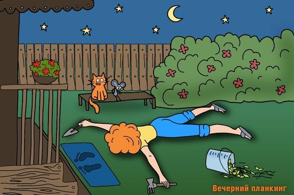 За занятиями вечерним планкингом можно заметить только истинных садовых ЗОЖников