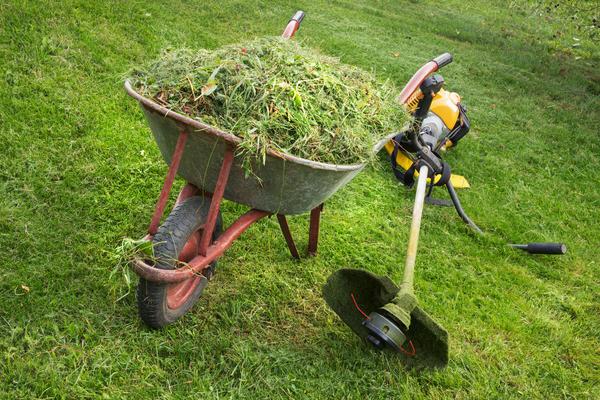 Завершающий этап стрижки газона - вычесывание лужайки от скошенной травы