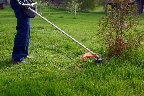 Триммером удобно окашивать сложные участки, недоступные для газонокосилки