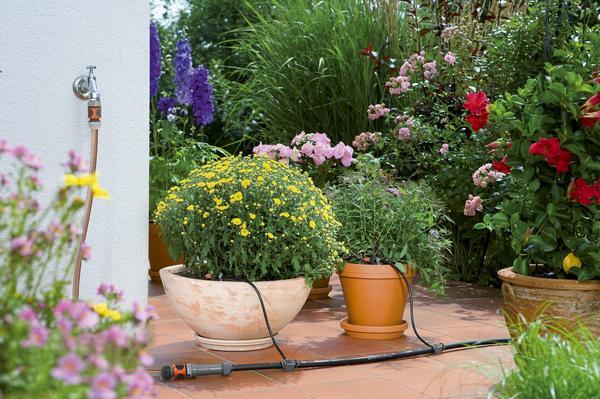 Организация полива растений в контейнерах от Gardena