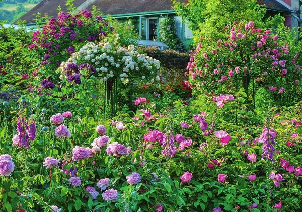 Владелец этого сада - большой почитатель роз, ведь участок всецело отдан в распоряжение королеве цветов. Даже традиционное место деревьев заняли штамбовые красавицы