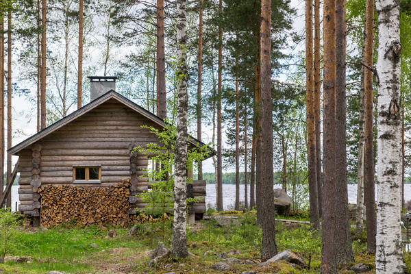 Традиционная финская сауна
