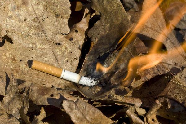 Непогашенный окурок может стать причиной пожара