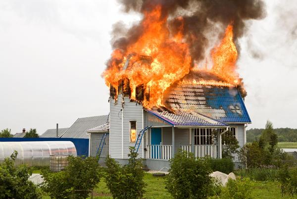 В 2017 году в России в сельской местности произошло 54 296 пожаров