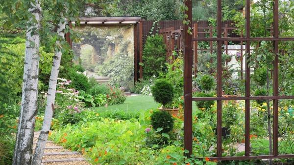 Свободное место в молодом саду можно заполнить однолетними растениями