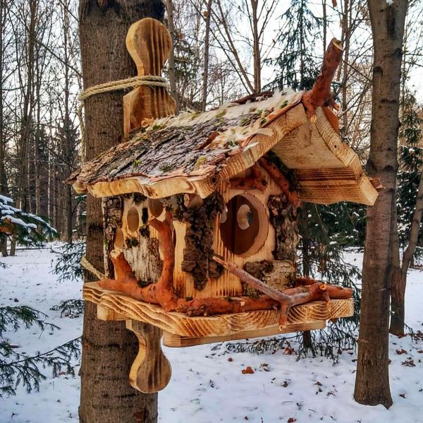 Кормушка, установленная на стволе дерева. Фото автора