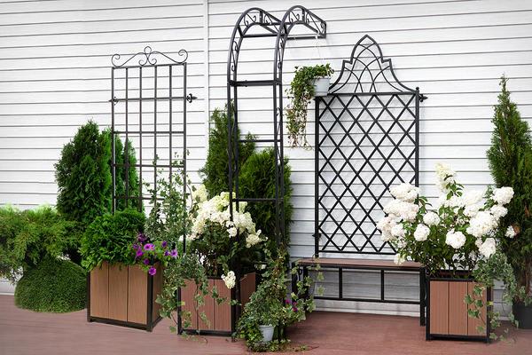 Шпалеры и опоры в саду нужны не только для красоты