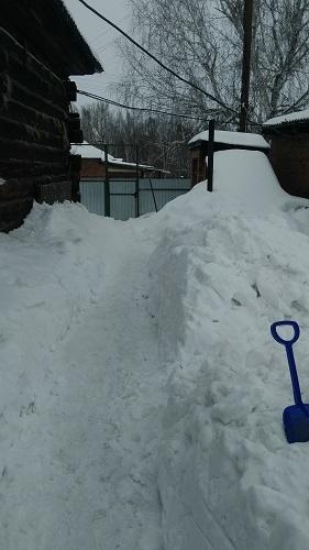 Пока единственная работа для садовода на улице - откапывать дорожки :)