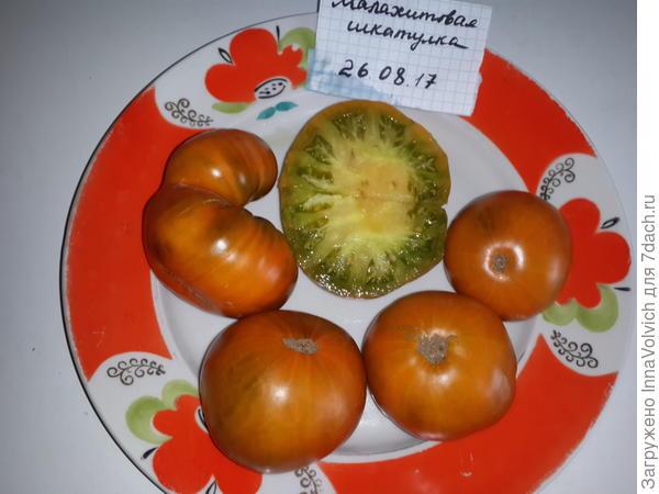 """""""Малахитовая шкатулка"""" от """"Сибирского сада"""" - вкусный с необычным привкусом, замечательный томат!"""