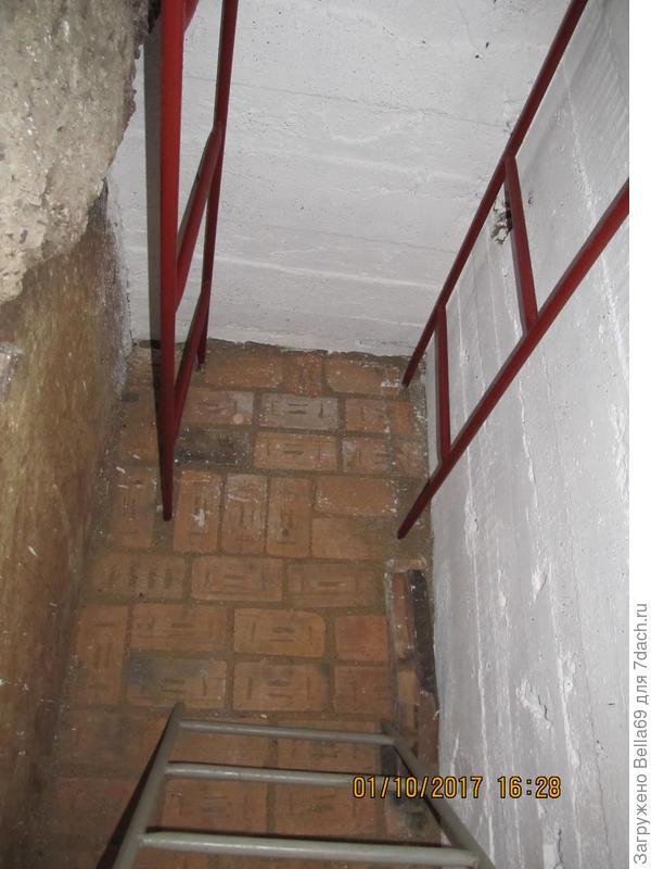 в подвале кирпичом выложили полы
