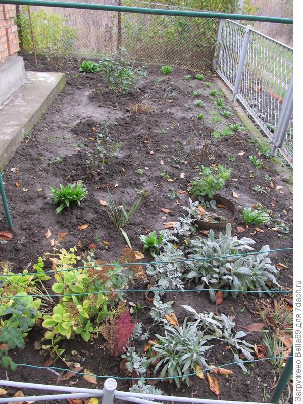 в палисаднике есть где разгуляться и много чего хочется посадить,но это место тенистое
