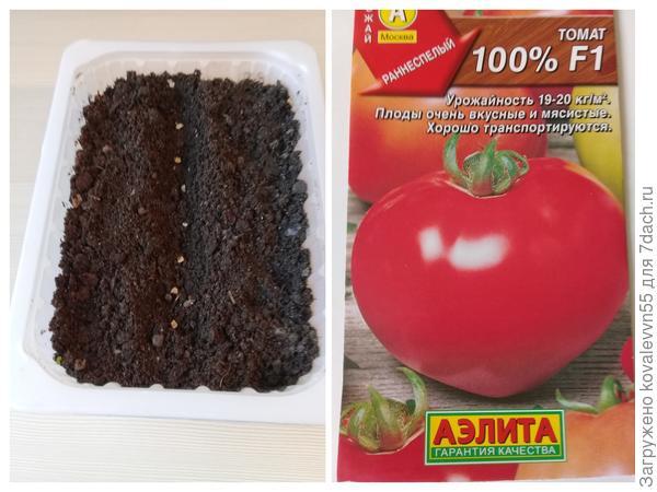 """Посев томатов """"100%""""f1"""
