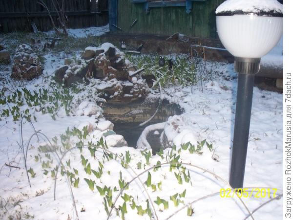 в мае занесло снегом