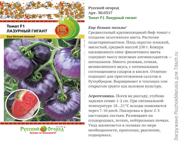 Подводим итоги: томат 'Лазурный гигант' F1 от Русского Огорода