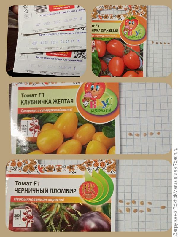 Две клубнички и пломбир - пир бесспорно на весь мир! Начинаем тестировать томаты от Русского Огорода