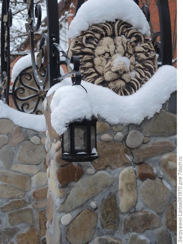 львы шамот