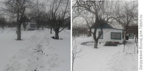 Зима 2014 уже моя, но фотографировала предыдущая хозяйка себе на память  (с фото та же беда).