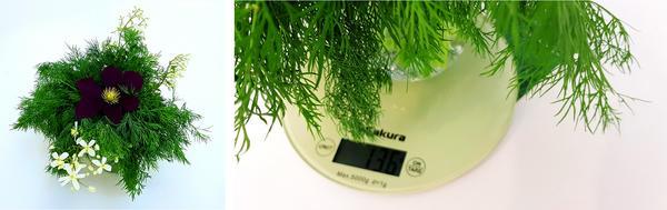 Первый ароматный букет укропа весом в 136 г