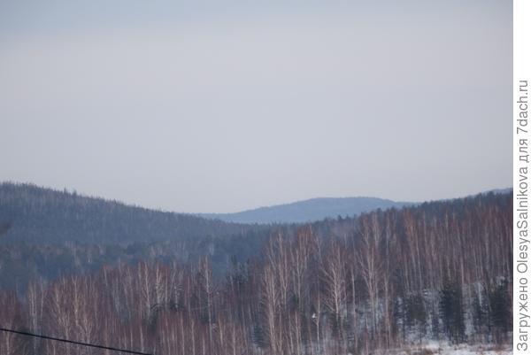 безмятежным сном спит зимний лес